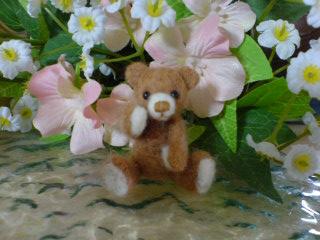 hana-bear-2005-11-26T13_50_36-1.jpg