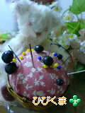 image/hana-bear-2006-02-09T11:06:07-1.jpg